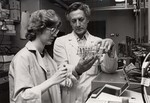 College student in lab, 1981 by Medical Graphics and Communications