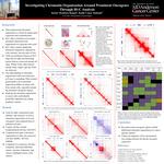 Investigating Chromatin Organization Around Prominent Oncogenes Through Hi-C Analysis