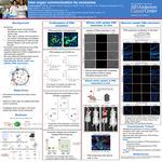 Inter-organ communication by exosomes