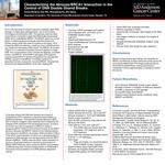 Characterizing the Abraxas/BRCA1 Interaction in the Control of DNA Double Strand Breaks by Grace Marie Murphy, Xiao Wu, Shengfeng Xu, and Bin Wang