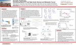 Oncolytic Virotherapy: Harnessing Nature to Treat High-Grade Gliomas and Metastatic Cancer by William Spencer Symmans, Dong Ho Shin PhD, Taylor Southward, Teresa Nguyen PhD, Sagar Sohoni PhD, Juan Fueyo M.D., and Candelaria Gomez-Manzano M.D.