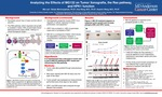 Analyzing the Effects of MG132 on Tumor Xenografts, the Ras pathway, and HPK1 function