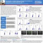 Determination of Optimal Cell and Plasmid Concentration for Transfection of I-SceI by DR-GFP Reporter