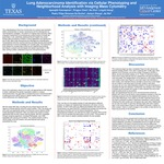 Lung Adenocarcinoma Identification via Cellular Phenotyping and Neighborhood Analysis with Imaging Mass Cytometry
