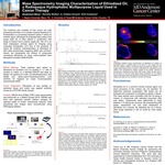 Mass Spectrometry Imaging Characterization of Ethiodized Oil, a Radiopaque Hydrophobic Multipurpose Liquid Used in Cancer Therapy