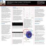 CAR (Chimeric antigen receptor) T Cell Generation by Baleigh Elizabeth Cavalier