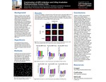 Combination of ATR Inhibition and X-Ray Irradiation Radiosensitizes Cancer Cells